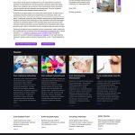 Projekt sklepu internetowego Styl Studio